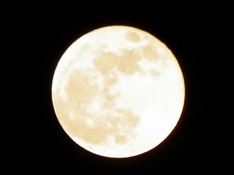 満月01.jpg